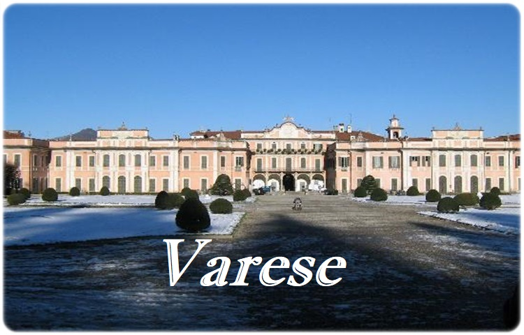 Private Taxi transfer from Turin Airport Caselle to Varese