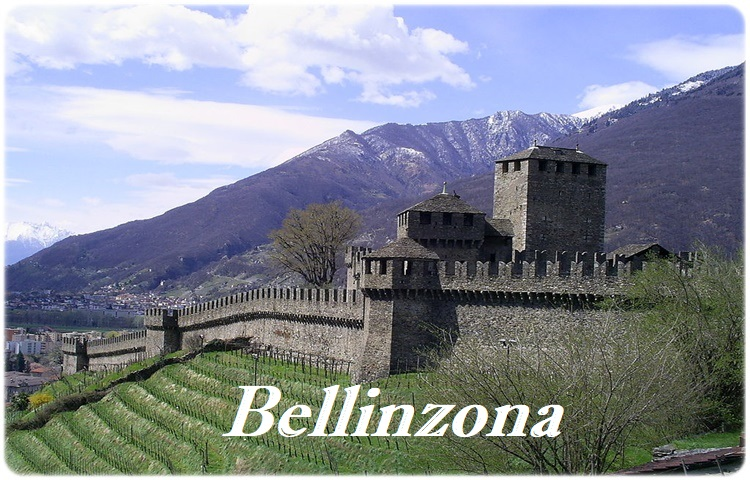 Private Taxi Transfer to Bellinzona (CH)