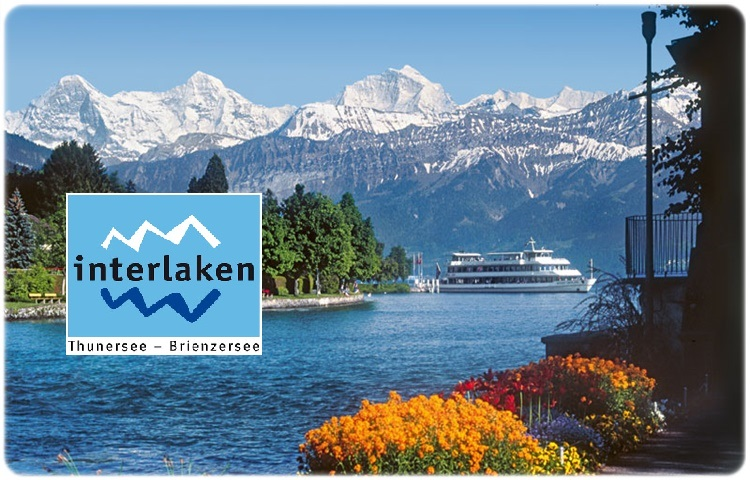 Transfer by private taxi to Interlaken (Switzerland)