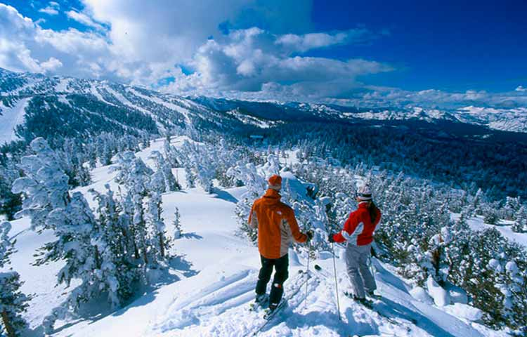 Transfer ski resorts